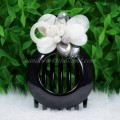 Flower Shell Hair Clip (White)
